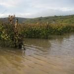 alluvione-soave